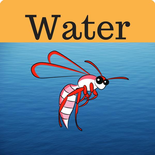 Water Quiz
