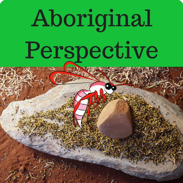 Aboriginal Perspective Quiz
