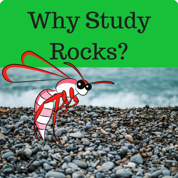Why Study Rocks Quiz