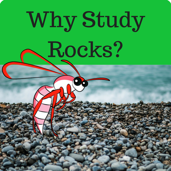Why Study Rocks Quiz