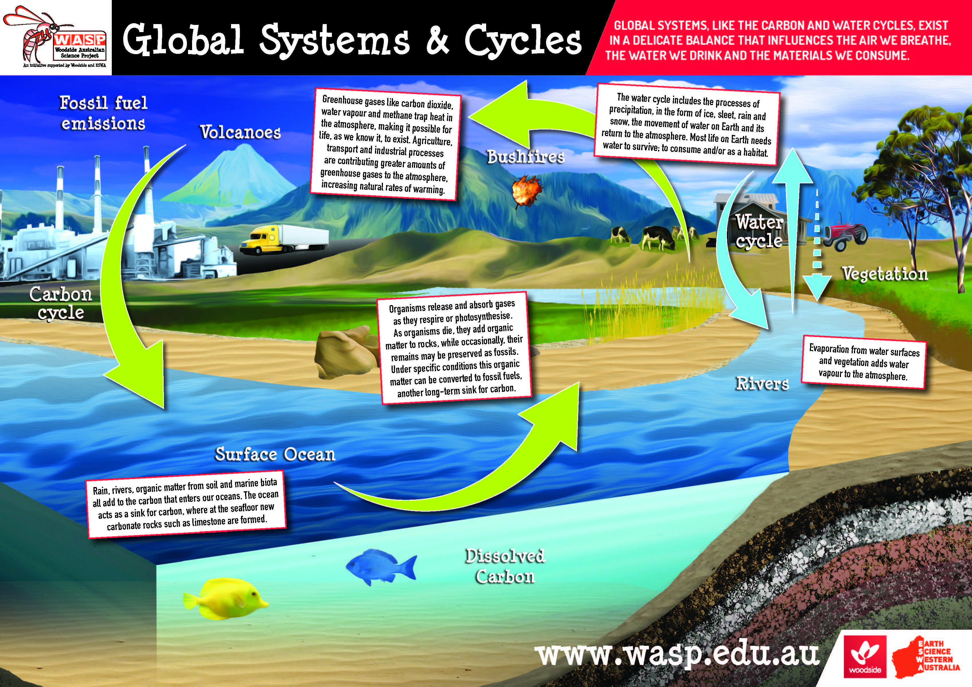 Global Systems and Cycles