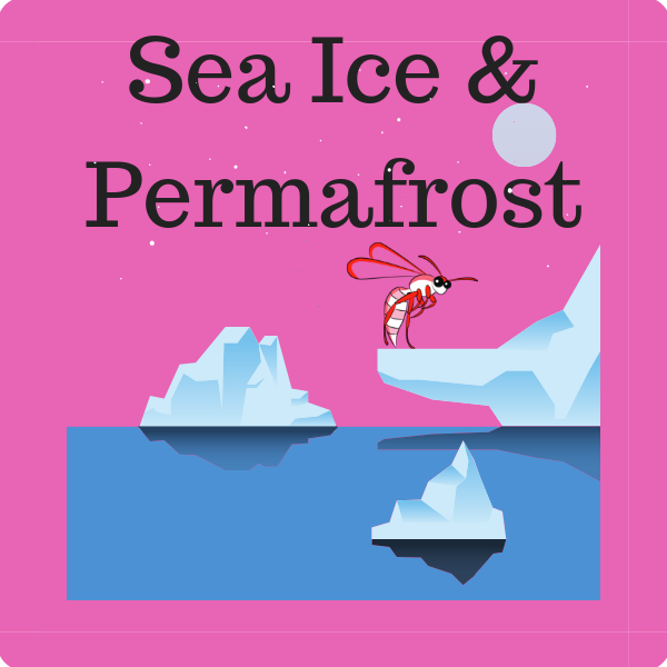 Sea Ice and Permafrost