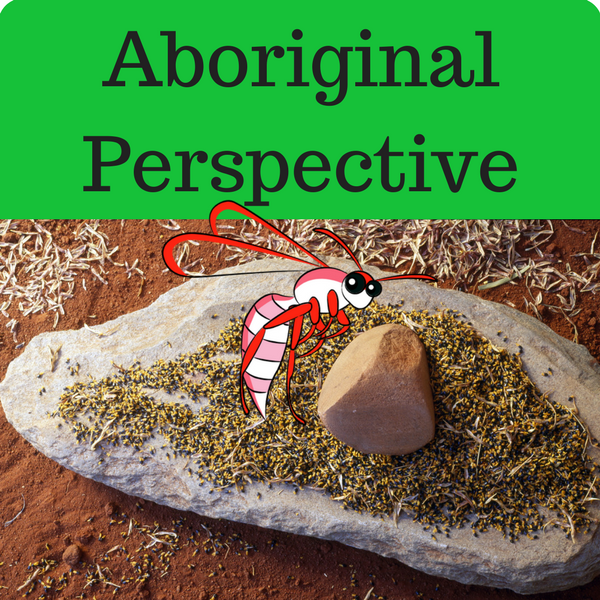 Aboriginal Perspective Quiz
