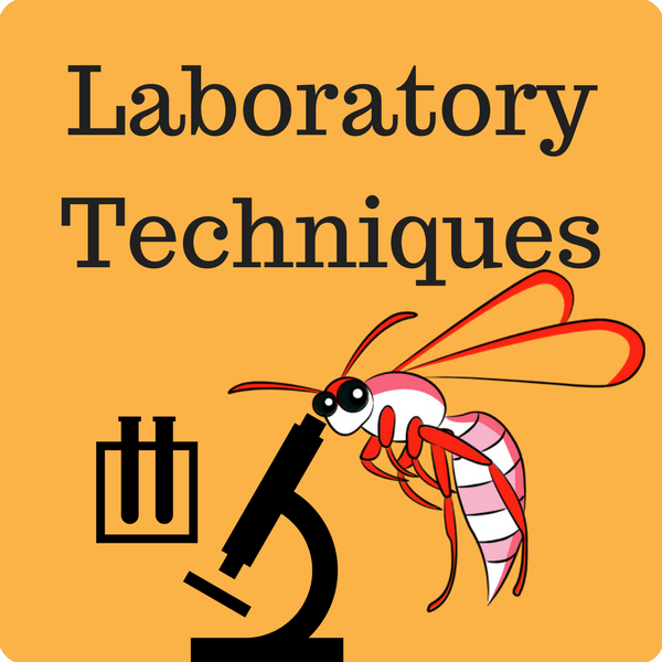 Laboratory Techniques Quiz
