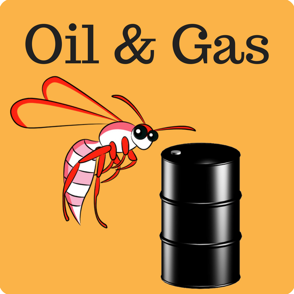 Oil & Gas Quiz