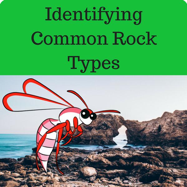 Identifying Common Rock Types Quiz