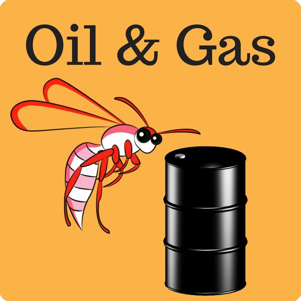 Oil & Gas Quiz