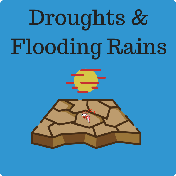 Droughts and Flooding Rains