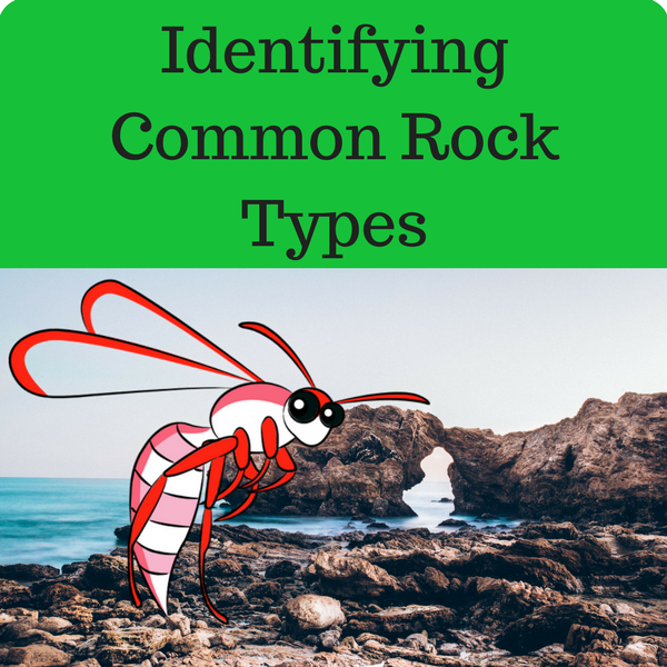 Identifying Common Rock Types Quiz