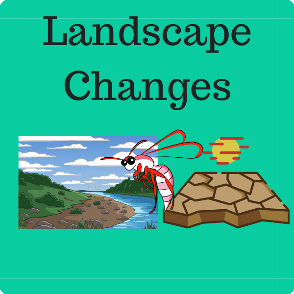 Landscape Changes