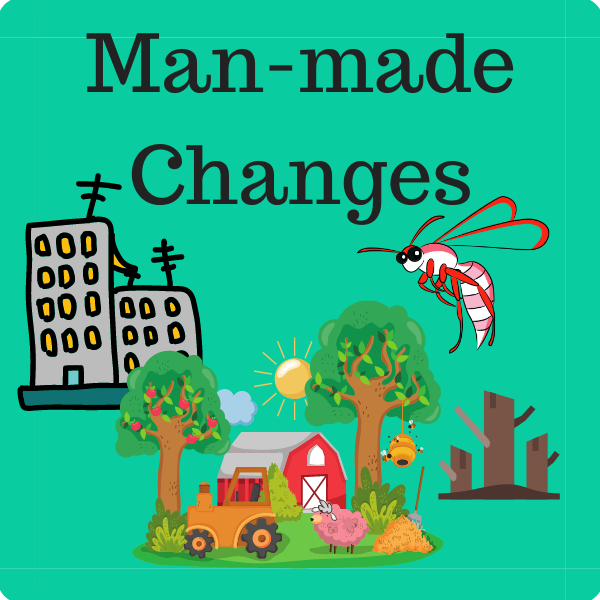 Man-Made Changes