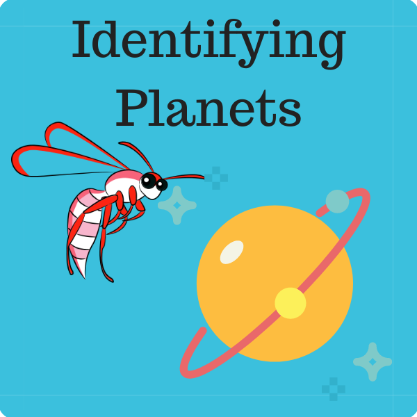 Identifying Planets