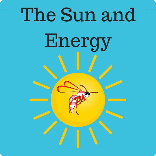 The Sun and Energy